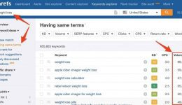Ahrefs-Keyword-Search-Tool