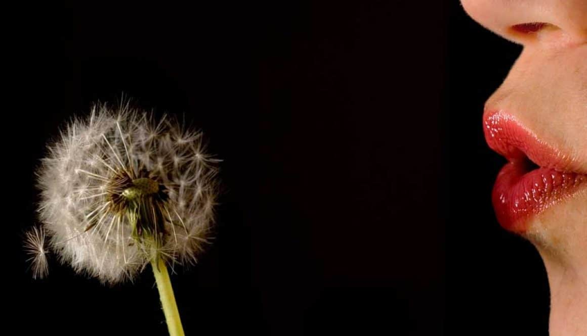 Beautify That Blog Post: Kill Your Dandelions